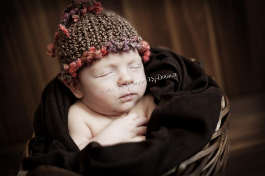 St. Albert Infant Photographer