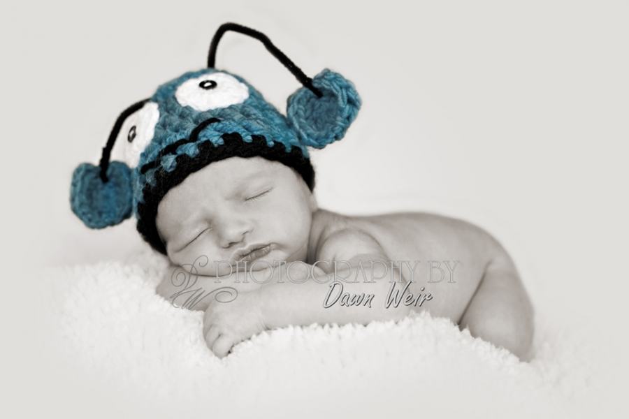 Newborn_Photographer_Edmonton24