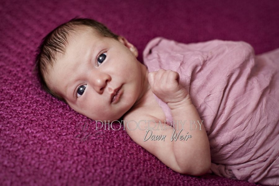 Newborn_Photos_Edmonton31