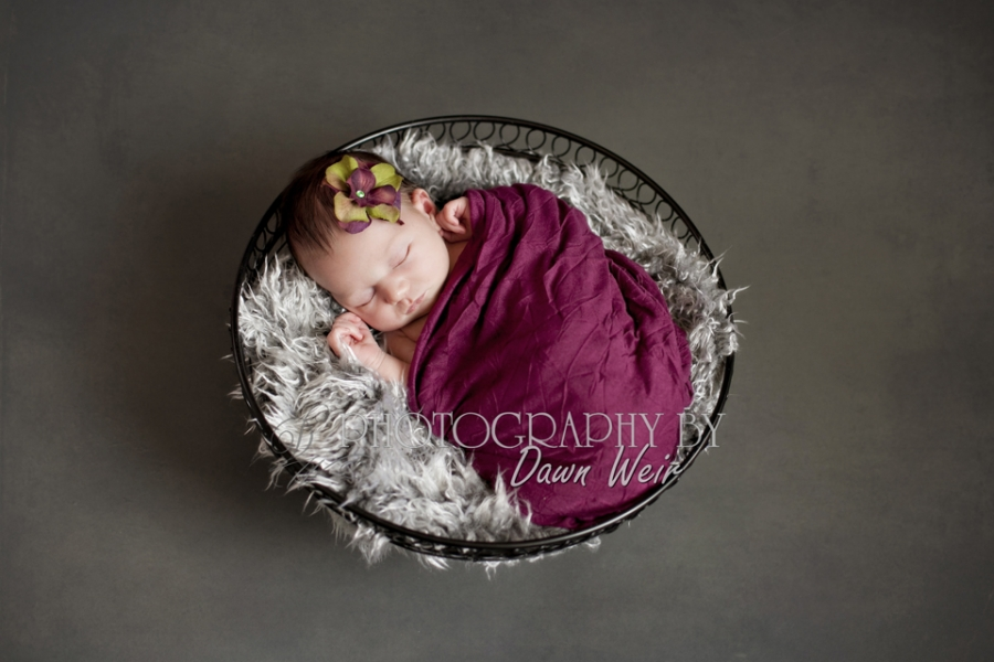 Newborn_Photos_Edmonton32