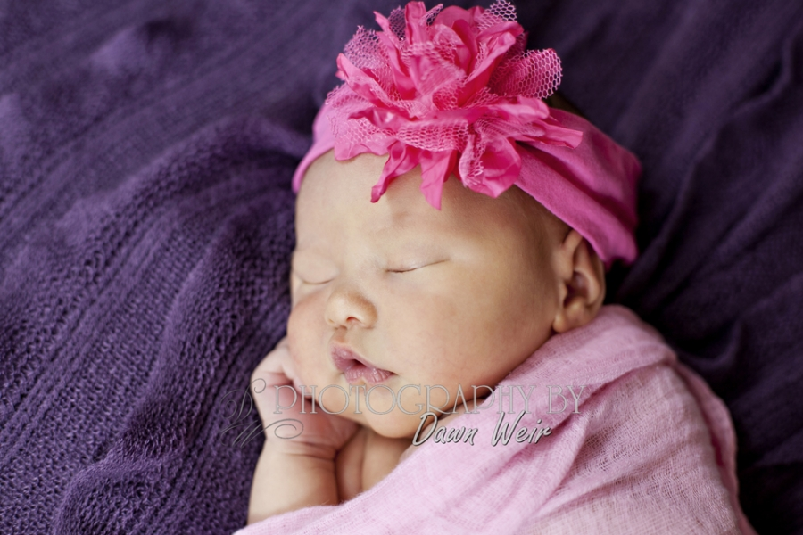 Edmonton_Newborn_Photographer37