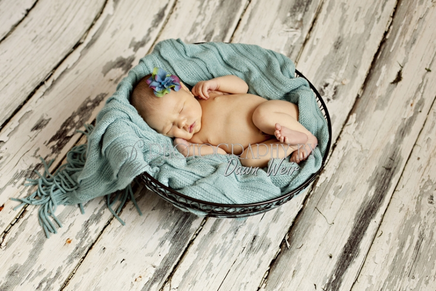 Edmonton_Newborn_Photographer39