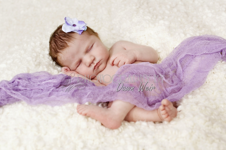 Edmonton_Newborn_Photos32