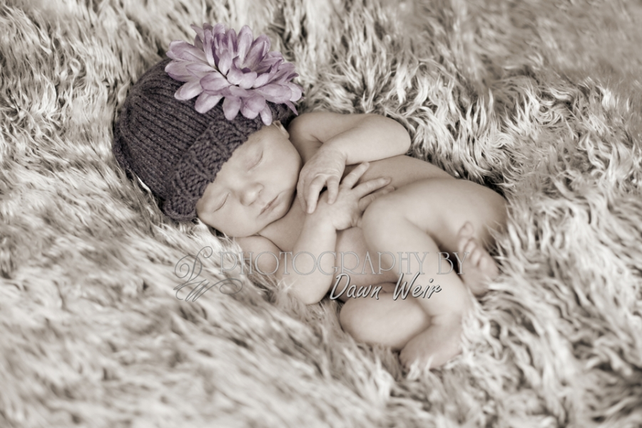 newborn_photographer_edmonton25