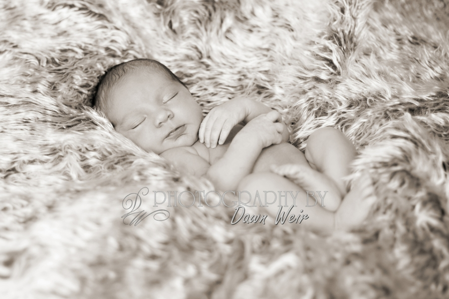 newborn_photographer_edmonton28