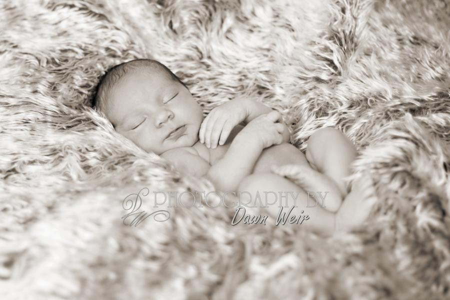 newborn_photographer_edmonton28