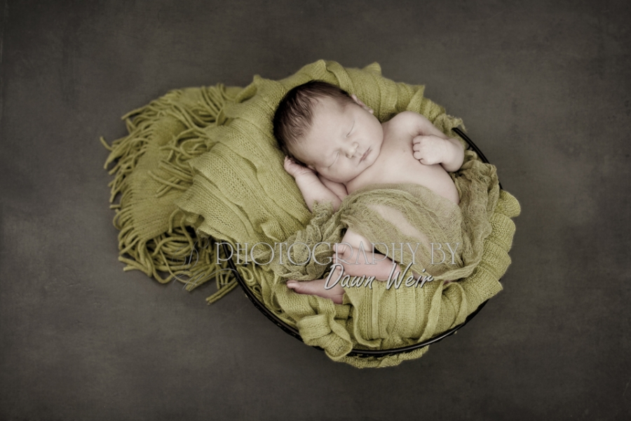 newborn_photos_edmonton_dawn_weir34
