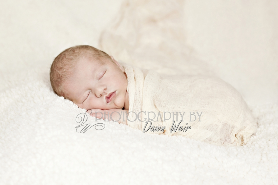 Edmonton Newborn Photographers, St. Albert Newborn Photographer