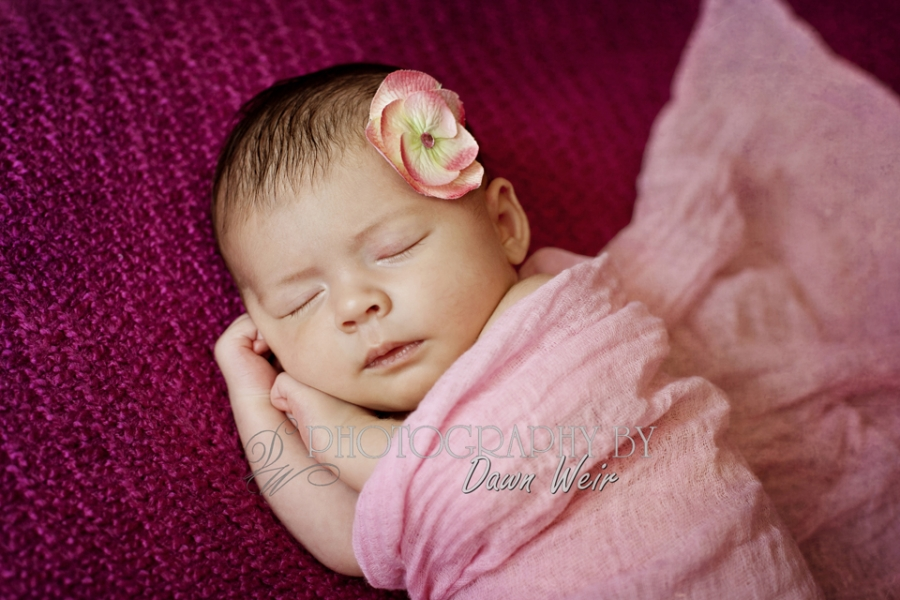 Newborn_Photographer_Edmonton30