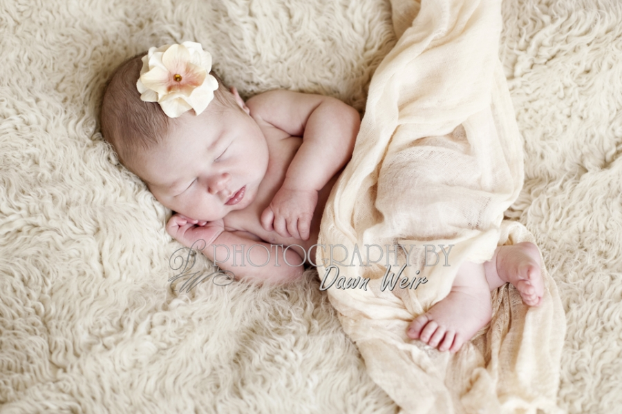 newborn_photographer_edmonton32
