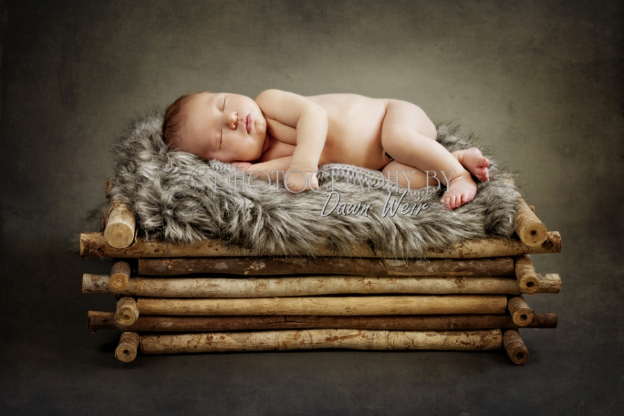 st albert photographer newborn
