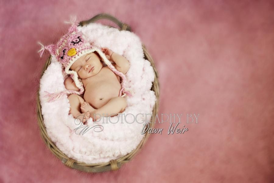 edmonton newborn photographers