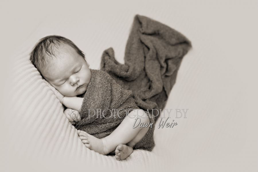 edmonton newborn photography