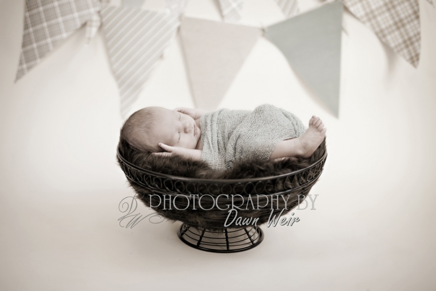 st albert edmonton photographer newborn