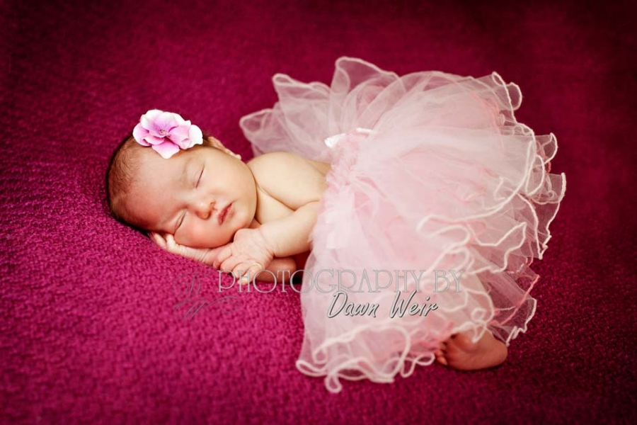 edmonton newborn photographers
