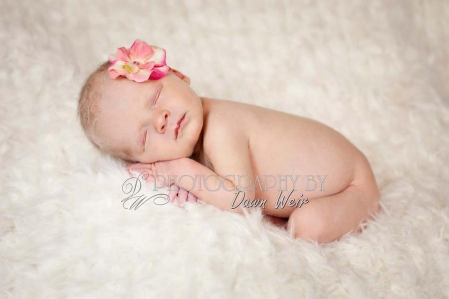 Edmonton_newborn_photographers