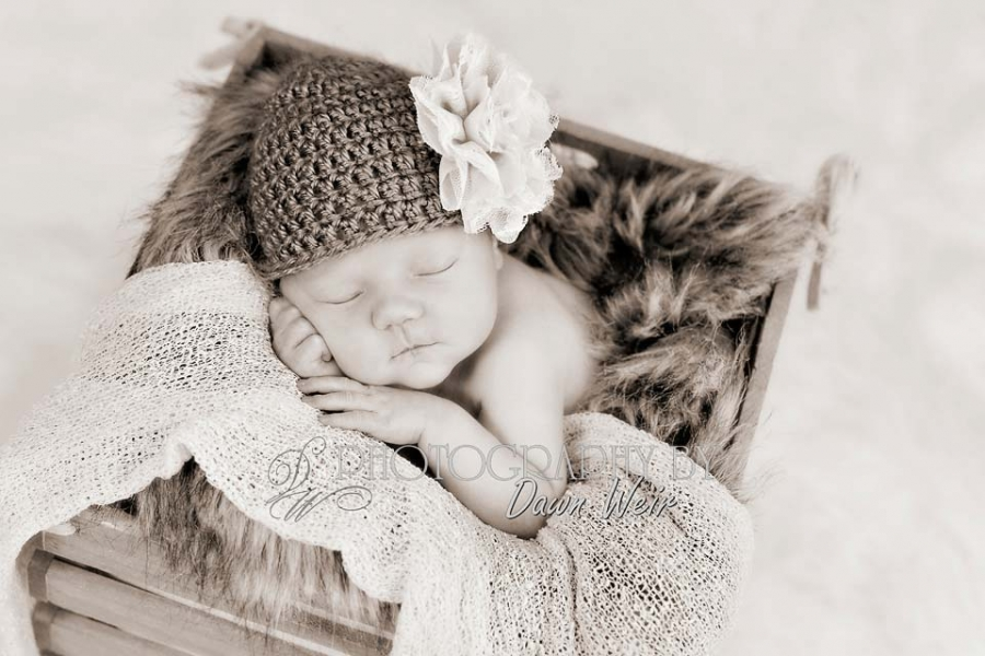newborn_stalbert_photographer