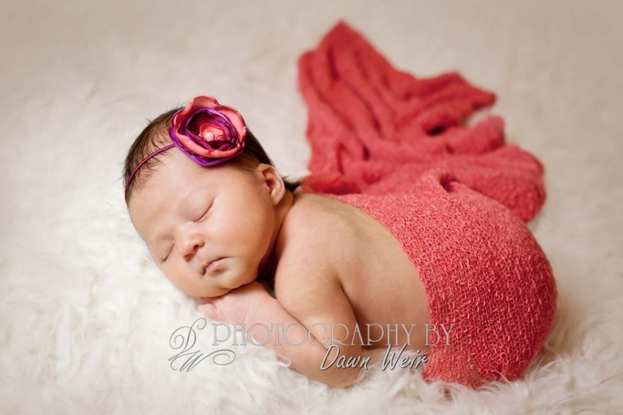 newborn_photographers_edmonton