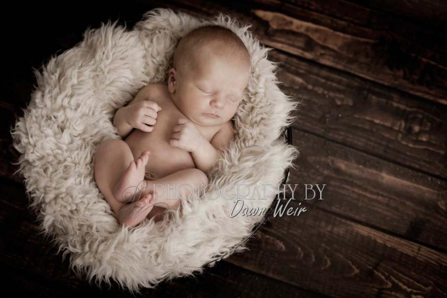 edmonton_newborn_photographer