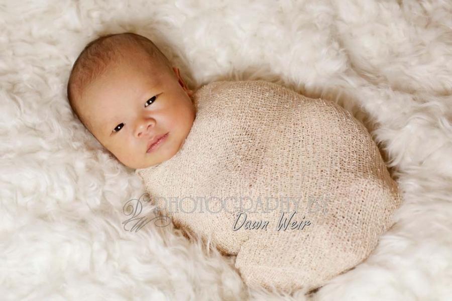 newborn photographer dawn weir
