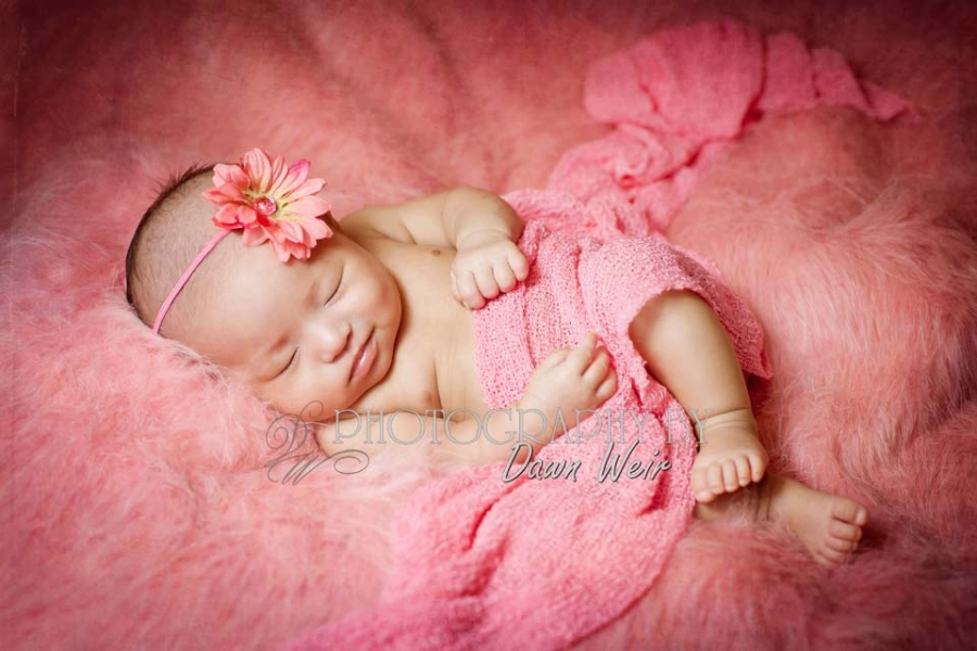 edmonton_baby_photographer