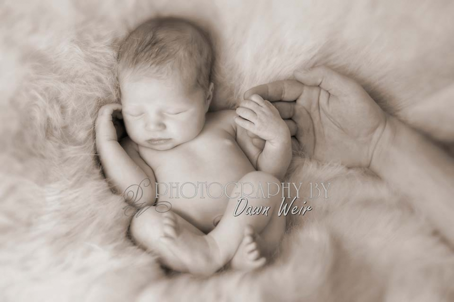 st albert_newborn_photography
