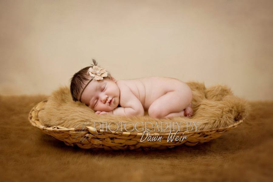 newborn_photographer_edmonton
