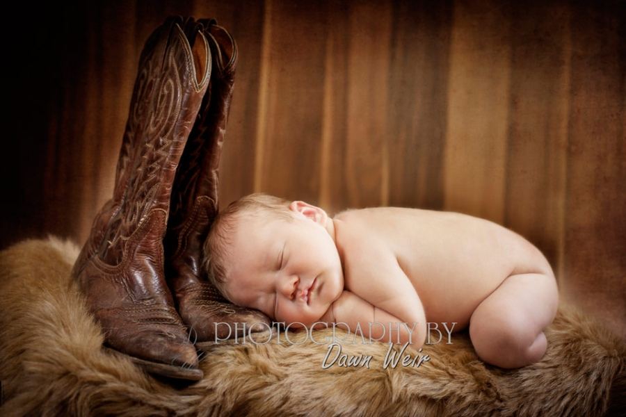 st albert_newborn_photographer