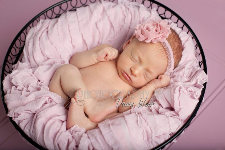 saint_albert_newborn_photographer
