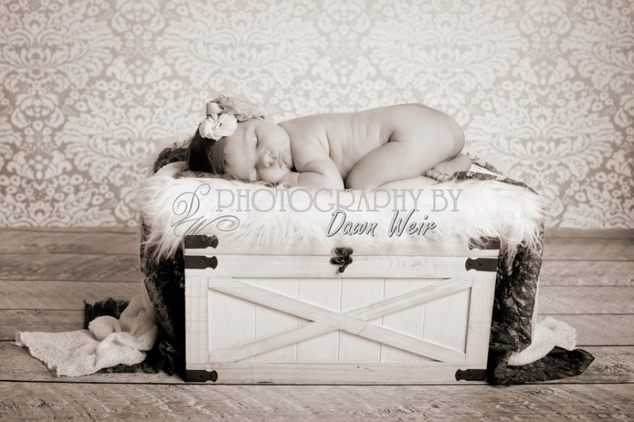 photographer_baby_st_albert_edmotnon