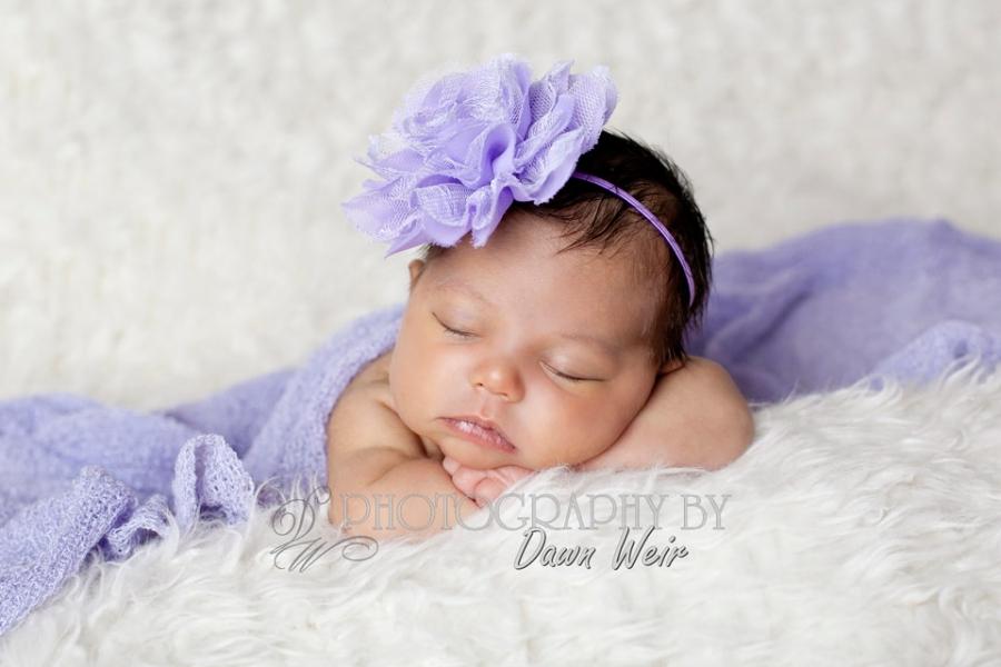 newborn baby photographer edmonton