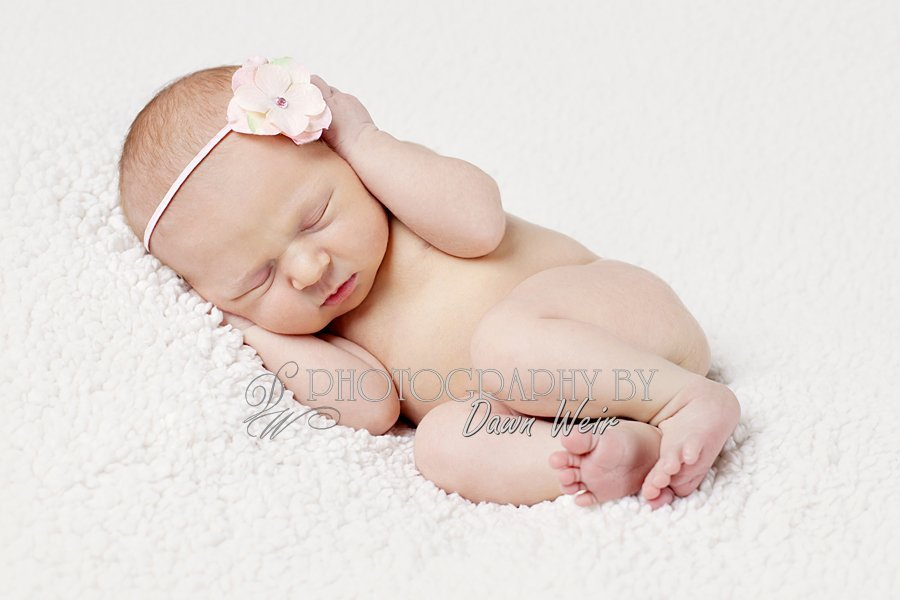 st_albert_newborn_photographer