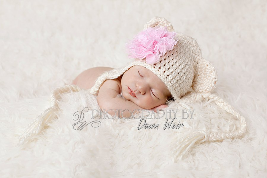 st-albert-newborn-photographer