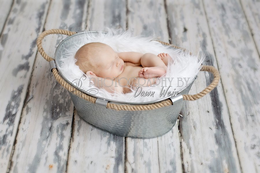 newborn-photographer-st-albert