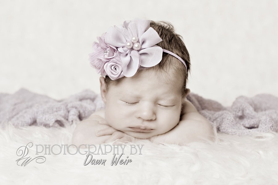 newborn-photography-dawn-weir