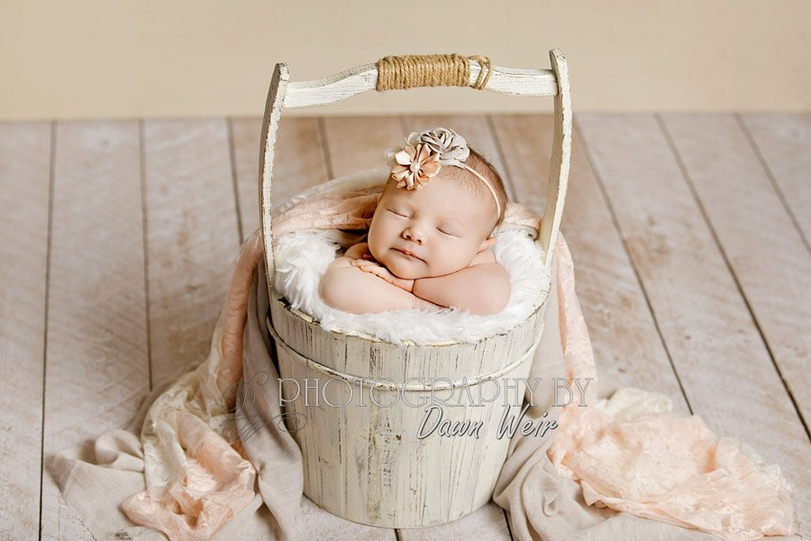 st.albert-newborn-photograper