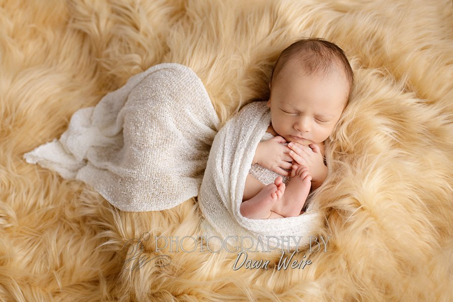 edmonton-newborn-photographer66