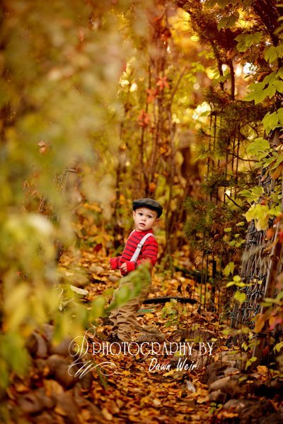 maternity pregnancy photographer edmonton
