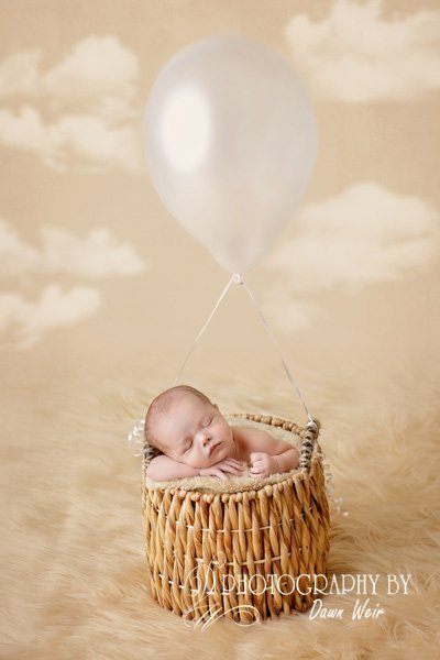 edmonotn-newborn-photographer79