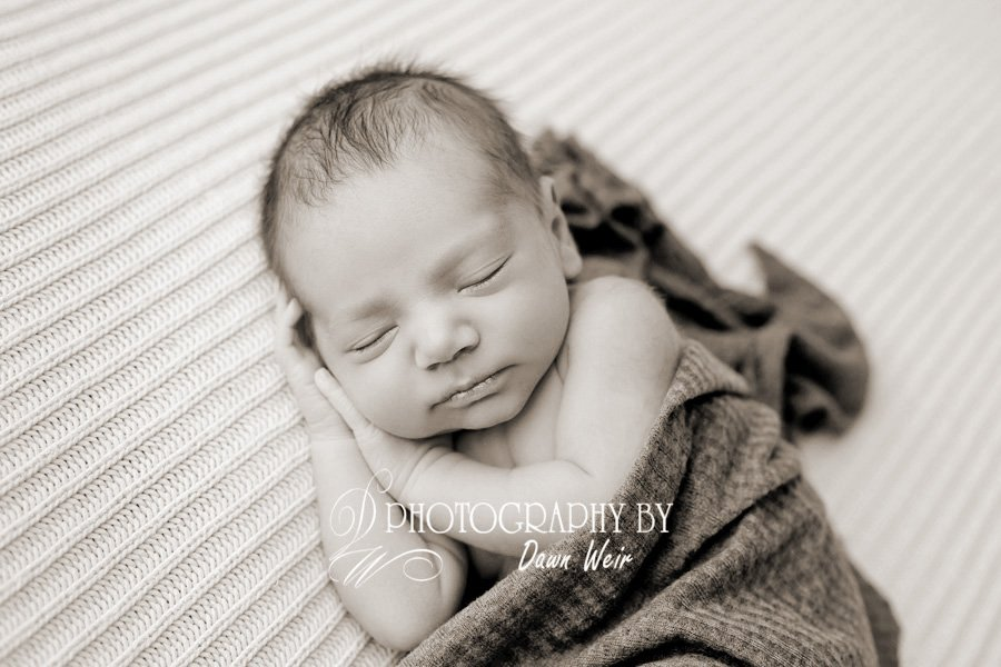 newborn photographer edmonton