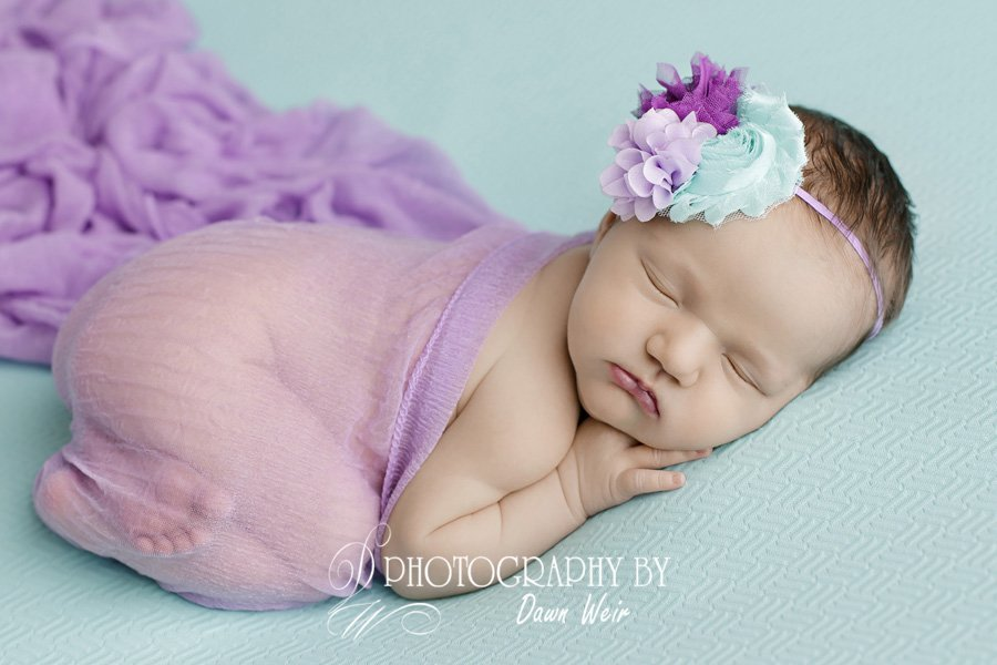 baby photographer edmonton dawn weir