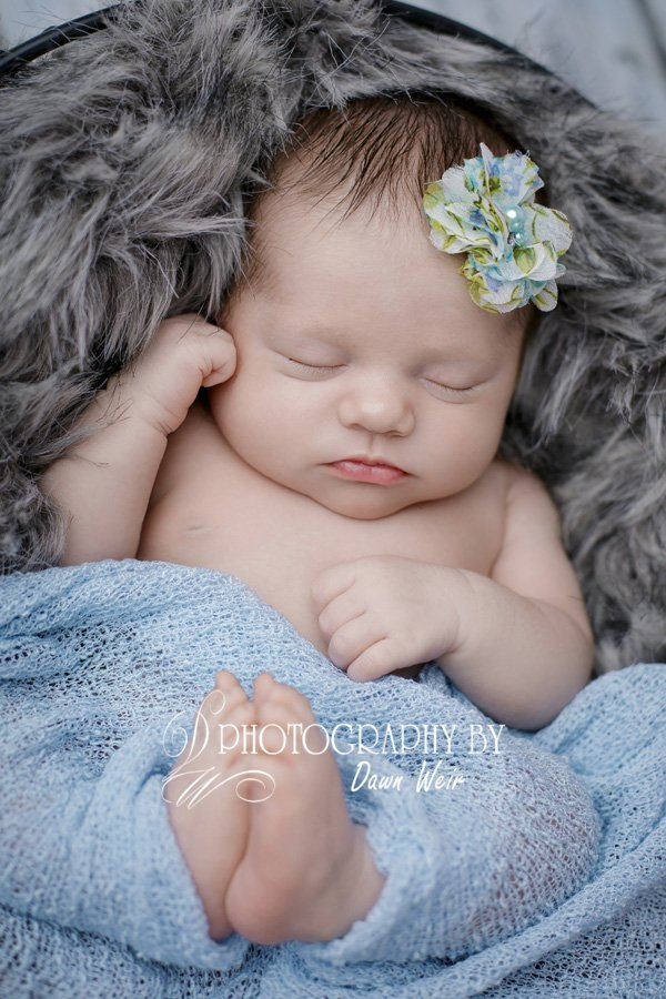 edmonton newborn photographer dawn weir