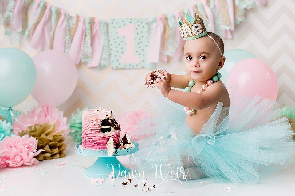 st albert cake smash photographer