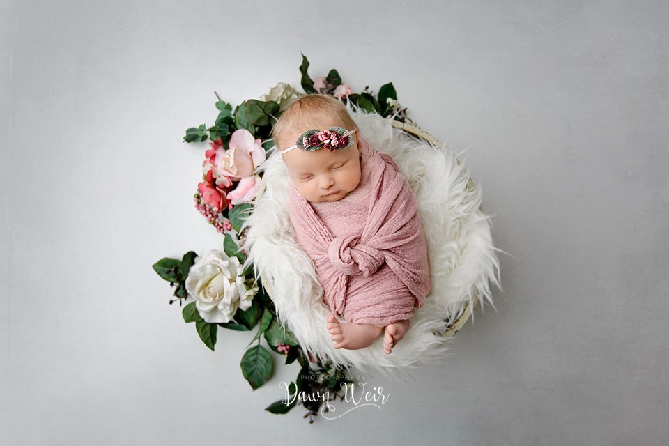 edmonton-newborn-photography-session-dawn-weir