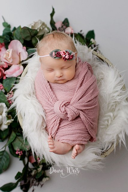 edmonton-newborn-photography-session-dawn-weir