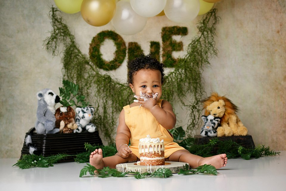 edmonton jungle lion boy cake smash photographer dawn weir