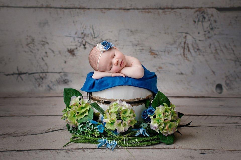 photo-by-newborn-photographer-dawn-weir-blue-hydrangeas-green-flowers-wood-backdrop