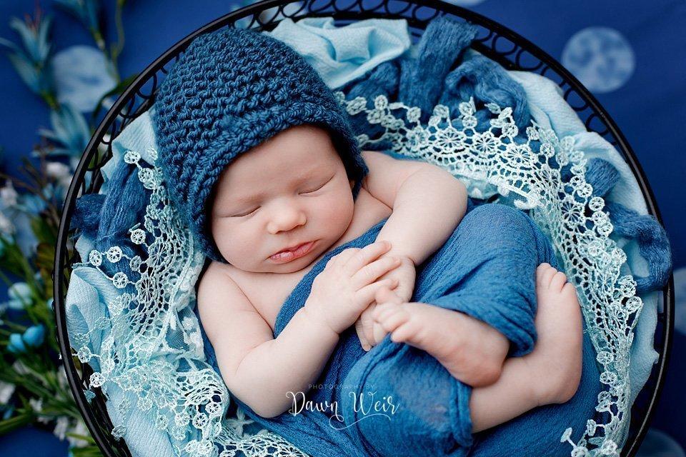 photo-by-newborn-photographer-dawn-weir-blue-hydrangeas-green-flowers