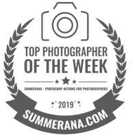 Top-Ten-Edmonton-Newborn-Photographer-Dawn-Weir