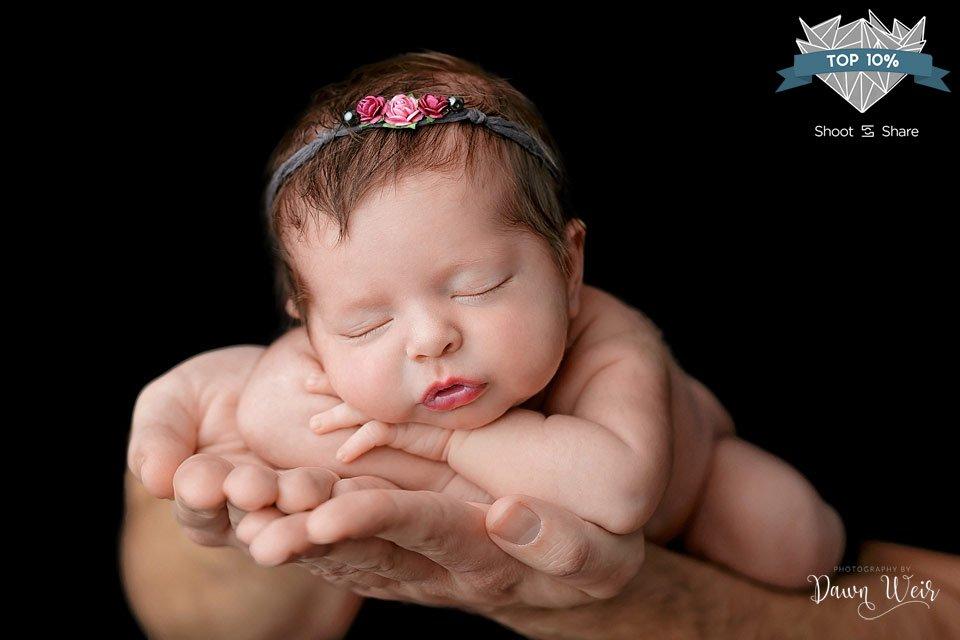 edmonton-newborn-award-winning--photographer-dawn-weir